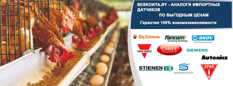 Beskonta - Датчики + Приборы + Системы